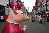 Rattenfängerfestival Hameln